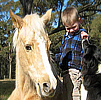 Celebrating Our Pets - Horses Pet Stories - A tip on handling horses who kicks!